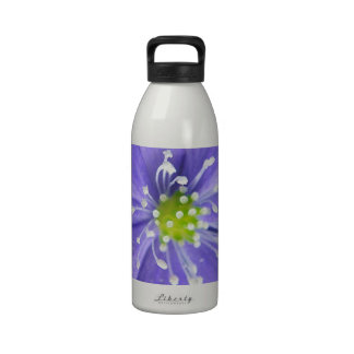 Center of a blue flower with white stamps water bottles