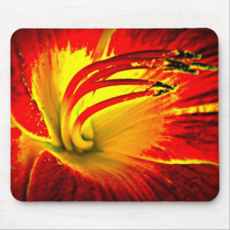 Centered in pixy dust mouse pad