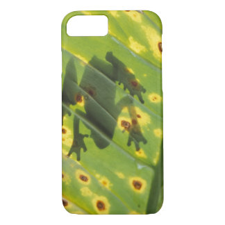 CENTRAL AMERICA, Costa Rica, Back-lit frog on iPhone 7 Case