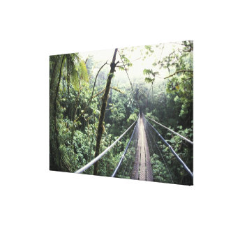 Central America, Costa Rica, Monteverde Cloud Stretched Canvas Print
