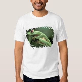 Central America, Panama, Barro Colorado Island, Tee Shirt