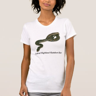 Central Highland Rainbow Boa Ladies Casual Scoop T Shirt