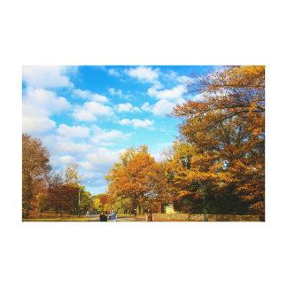 Central Park Autumn Day Photo Canvas Print