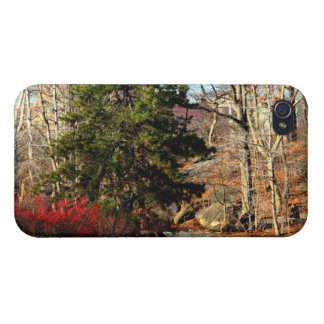 Central Park Autumn Landscape Photo iPhone 4 Cases