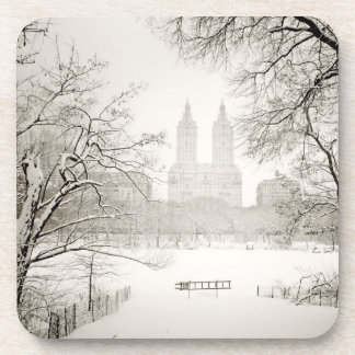 Central Park - Beautiful Winter Snow Coaster