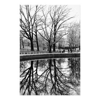 Central Park Black and White Landscape Photo