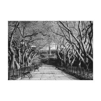 Central Park Black & White Landscape Photo Gallery Wrapped Canvas