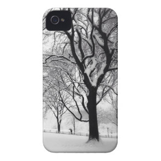 Central Park Blanketed In White iPhone 4 Covers