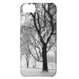 Central Park Blanketed In White iPhone 5C Case