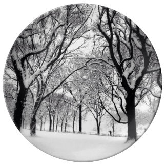 Central Park Blanketed In White Plate
