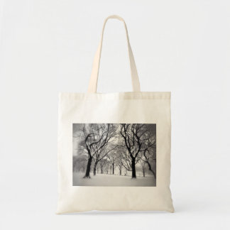 Central Park Blanketed In White Tote Bag