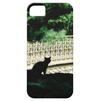 Central Park Cat iPhone 5 Cases