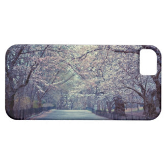 Central Park Cherry Blossom Path iPhone 5 Cover