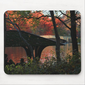 Central Park: Conversation Across From Bow Bridge Mouse Pad