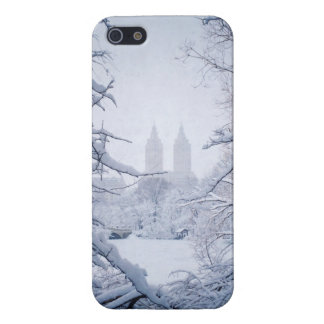 Central Park Framed In Snow and Ice iPhone 5/5S Cover