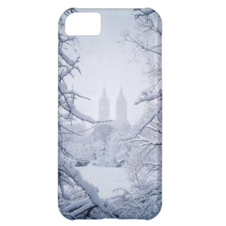 Central Park Framed In Snow and Ice iPhone 5C Case