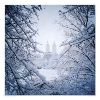 Central Park Framed In Snow and Ice Photo Print