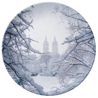 Central Park Framed In Snow and Ice Plate