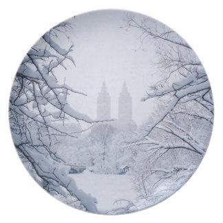 Central Park Framed In Snow and Ice Plates