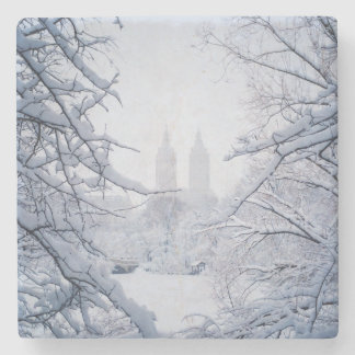 Central Park Framed In Snow and Ice Stone Coaster