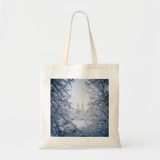 Central Park Framed In Snow and Ice Tote Bag