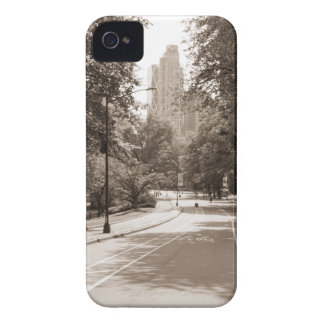 Central Park in New York City during the summer. iPhone 4 Cases