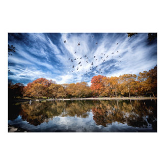 Central park in the fall photo print