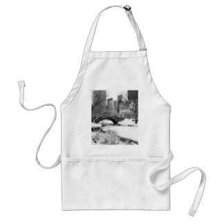 Central Park in Winter Aprons