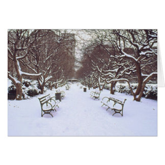 'Central Park in Winter' Holiday Card - Season