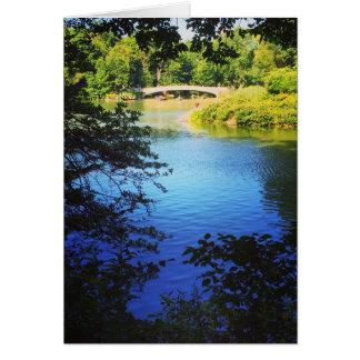Central Park Lake Bow Bridge NYC New York Photo Card