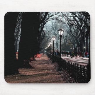 Central Park Landscape Lampposts Photo Mousepad