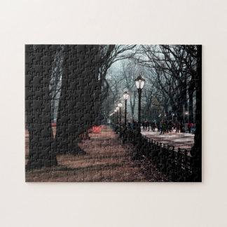 Central Park Landscape Lampposts Photo Puzzles