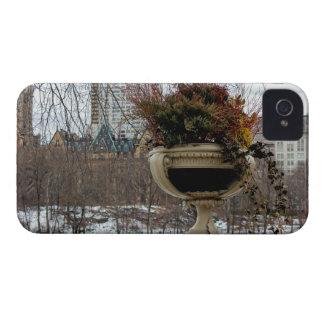 Central Park Landscape Photo iPhone 4 Case-Mate Cases