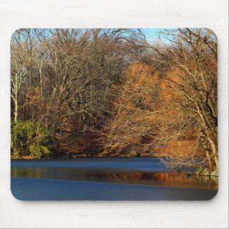 Central Park Landscape Photo Mousepad