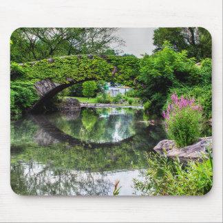 Central Park Landscape Photo Mousepads