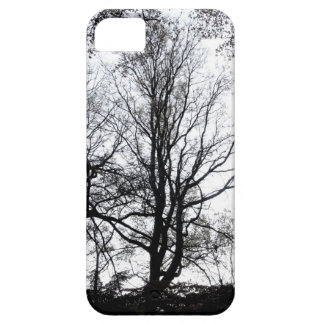 Central Park late autumn almost Barren Tree B&W iPhone 5 Case