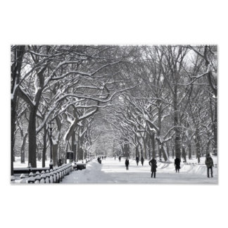 Central Park Mall Winter Scene Photo Print