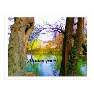 Central Park- Missing You Postcard