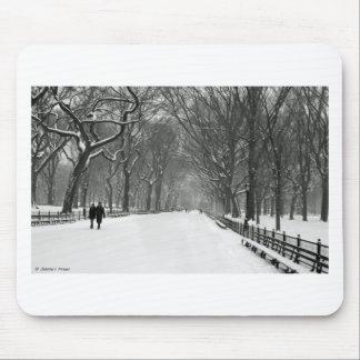 Central Park Mouse Pad