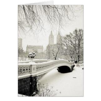 Central Park - New York Holiday Card