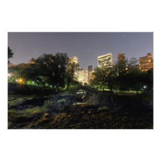 central park night time photo art