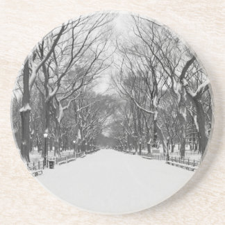 Central Park NYC in Winter - Coasters