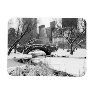 Central Park NYC in winter, Flexible Magnet