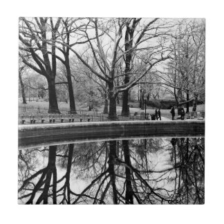 Central Park Photo, NYC Small Square Tile