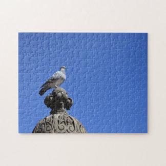 Central Park Pigeon Blue Sky New York City Bird Jigsaw Puzzle