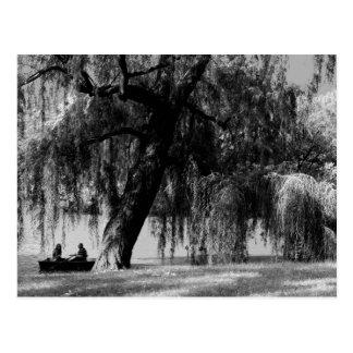 Central Park Rowboats Postcard
