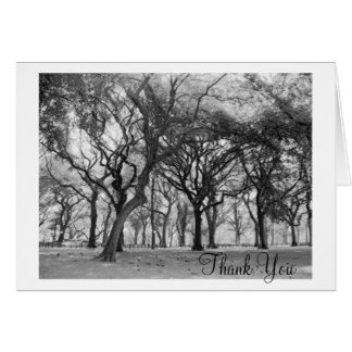 Central Park Thank You Greeting Card