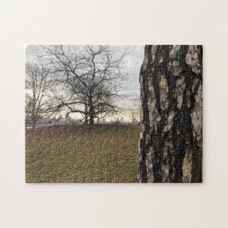 Central Park Trees Sunrise NYC New York City Photo Jigsaw Puzzle