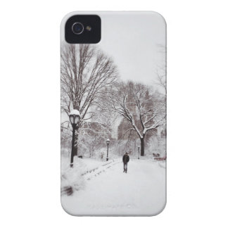 Central Park White Out Case-Mate iPhone 4 Cases