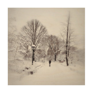 Central Park White Out Wood Wall Art